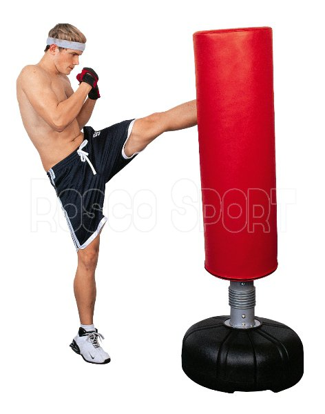 Spartan Box Trainer